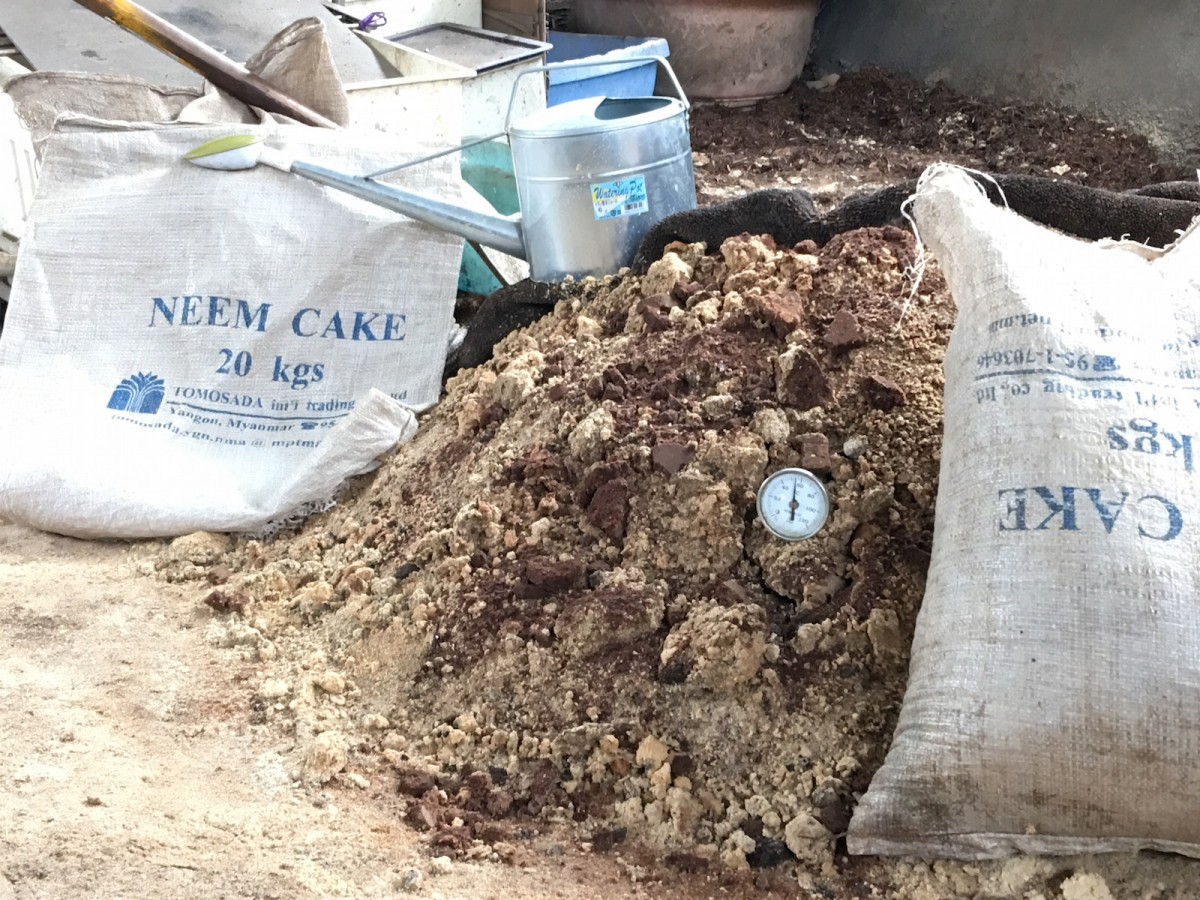 ニーム発酵堆肥