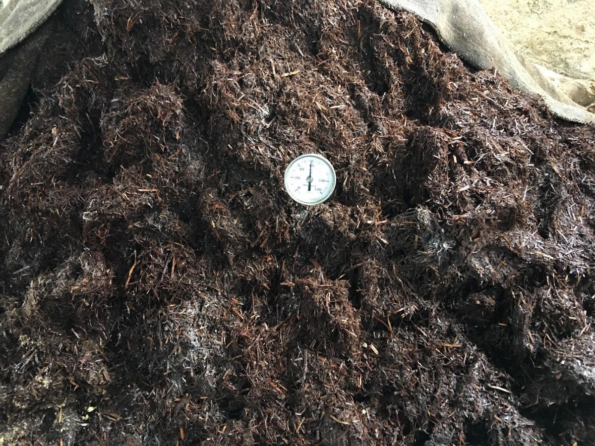 サラブレッド発酵堆肥